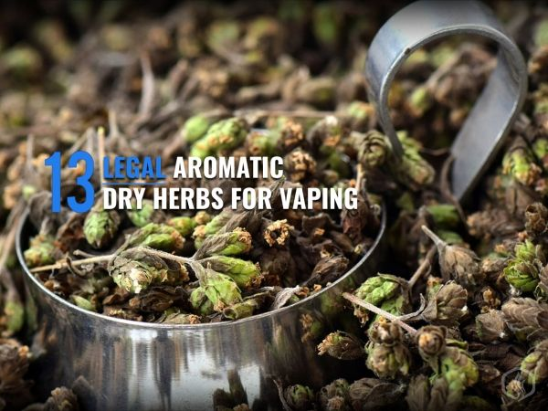 13 Legal aromatic dry herbs for vaping Image
